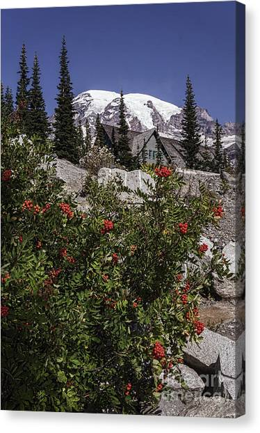 Mt Ash At Mt Rainier Canvas Print