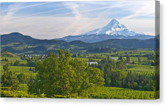 Mt. Hood Canvas Print - Mt Hood And Hood River Valley by Panoramic Images