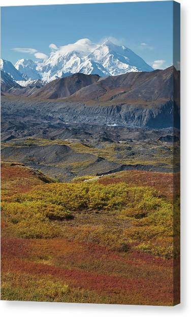 Mt. Massive Canvas Print - Mt Mckinley, Tallest Peak In North by Hugh Rose