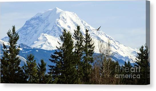 Mt. Rainier And A Bald Eagle  Canvas Print