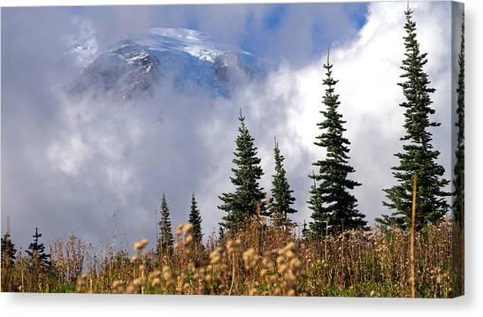 Mt Rainier Cloud Meadow Canvas Print