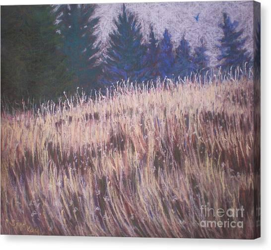 Mt. Tabor Contrasts Canvas Print
