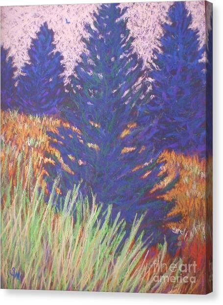 Mt. Tabor Trees Canvas Print