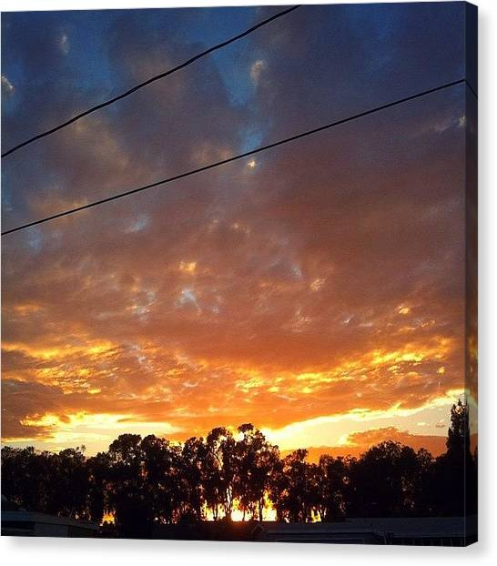 Orange Tree Canvas Print - An Epic Sunset. by Dat Dang