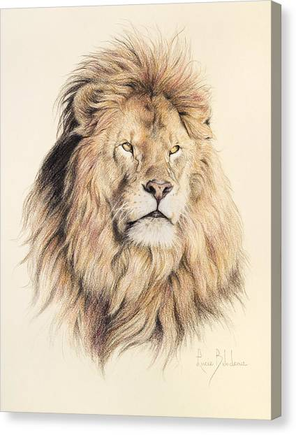 Lions Canvas Print - Mufasa by Lucie Bilodeau