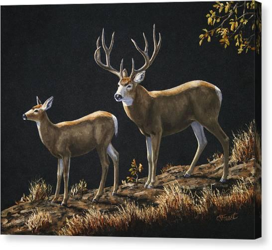 Mule Deer Canvas Print - Mule Deer Ridge by Crista Forest