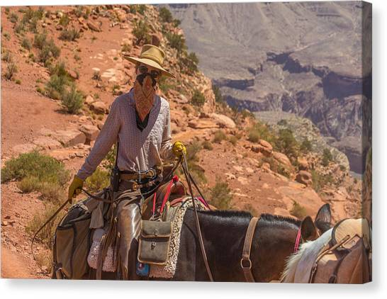 Mule Wrangler On The South Kaibab Trail Canvas Print