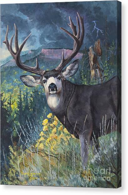 Mulie Storm Canvas Print
