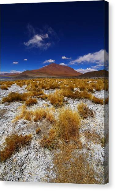 Bolivian Canvas Print - Multicoloured Desert by FireFlux Studios