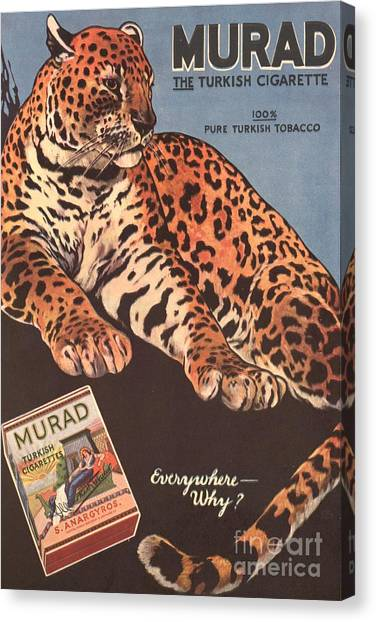 Murad 1910s Usa Cigarettes Smoking Canvas Print by The Advertising Archives
