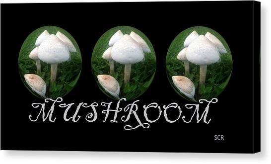 Mushroom Art Collection 2 By Saribelle Rodriguez Canvas Print
