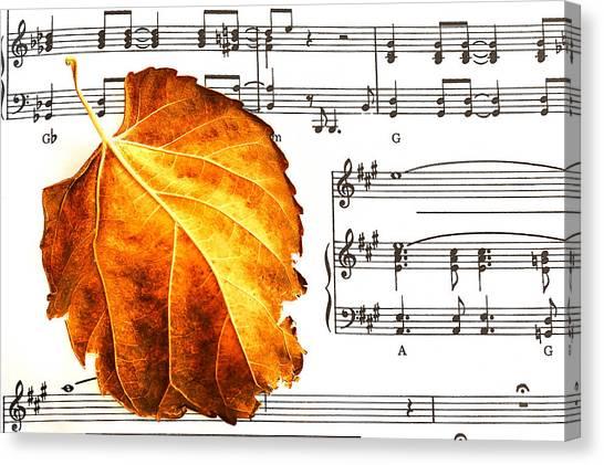 Music In Autumn Canvas Print