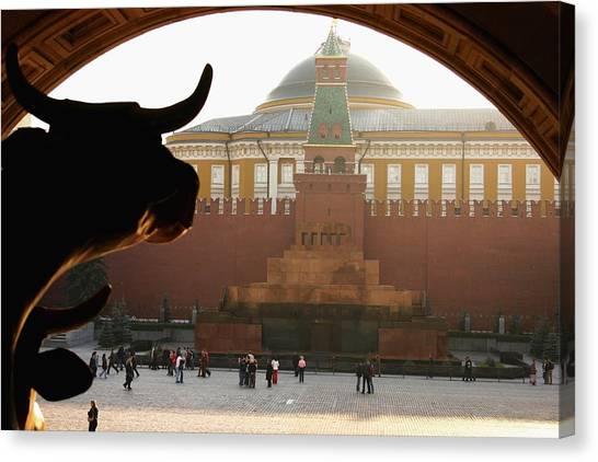 Muscovite Bulls 2 Canvas Print by Juozas Mazonas