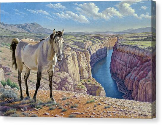 Wyoming Canvas Print - Mustang At Bighorn Canyon by Paul Krapf