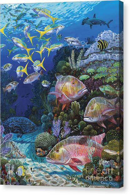 Scuba Diving Canvas Print - Mutton Reef Re002 by Carey Chen