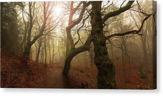 Autumn Leaves Canvas Print - My Autumn Walk.. by Leif L?ndal