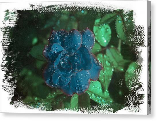 My Blue Rose Canvas Print