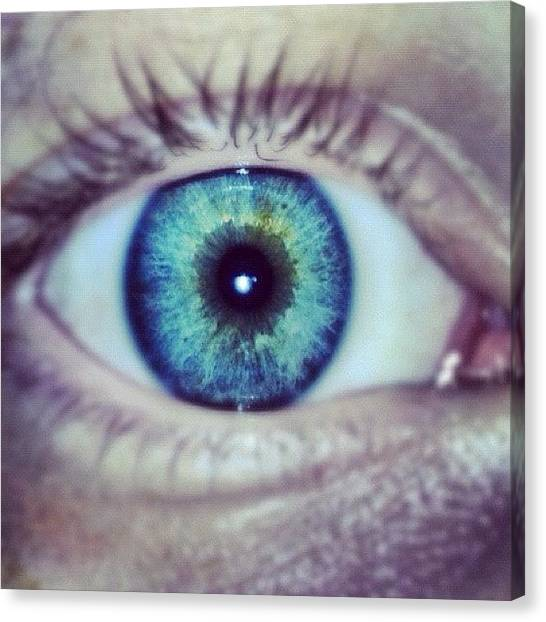 Irises Canvas Print - •my Eyes On You• And Yes This Is My by Fredrik Renman