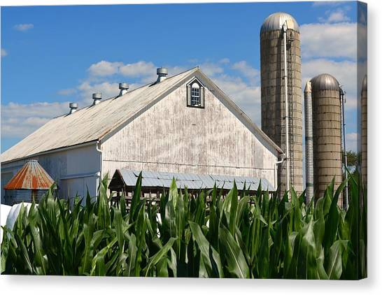 My Favorite Barn In Summer Canvas Print