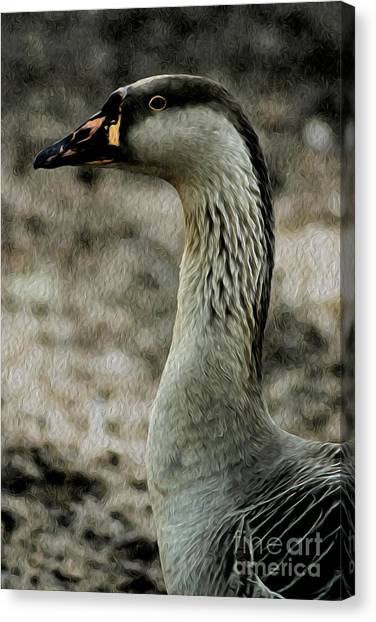 My Good Side Canvas Print by Kenneth Montgomery
