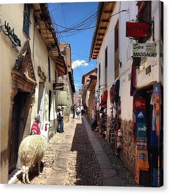 Llamas Canvas Print - My Last Walk Through The Streets Of by Blogatrixx