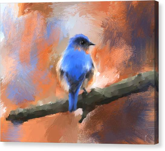 My Little Bluebird Canvas Print