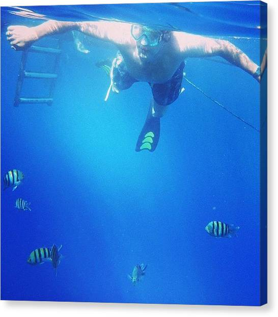 Underwater Canvas Print - My Man And The by Heidi Taule
