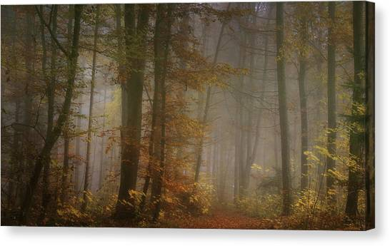 Atmosphere Canvas Print - My November by Norbert Maier
