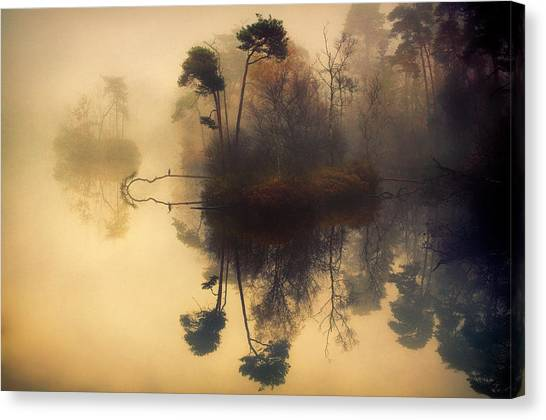 Small Birds Canvas Print - My Place by Anton Van Dongen