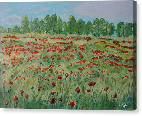 My Poppies Field Canvas Print