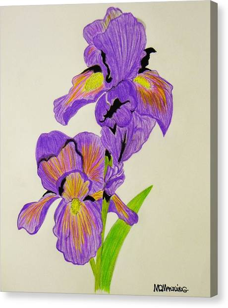 My Sweet Iris Canvas Print