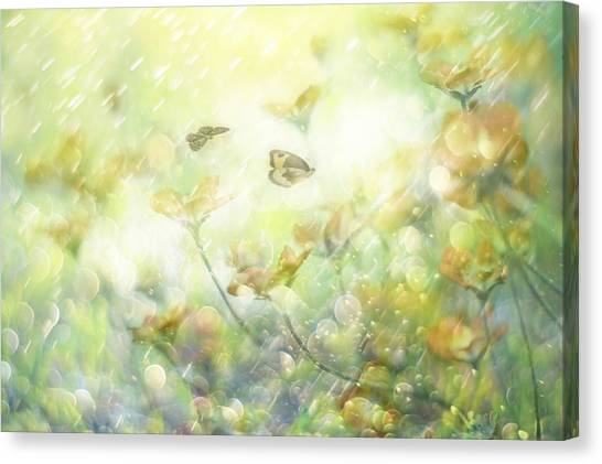 Yellow Butterfly Canvas Print - My Wonderful World by Delphine Devos