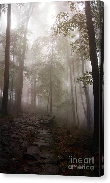 Mysterious Forest 5 Canvas Print