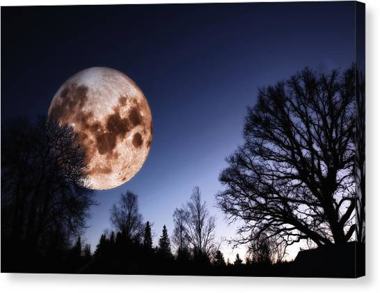 Mysterious Full Moon Rising Over Forest Canvas Print