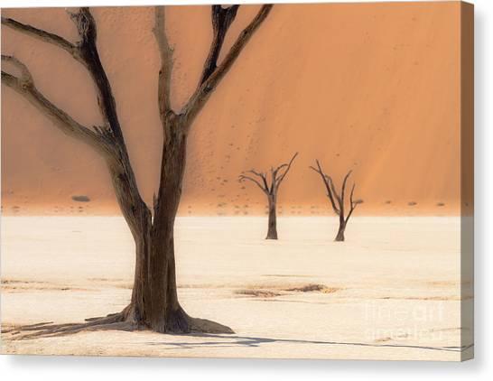 Mystic Africa Canvas Print