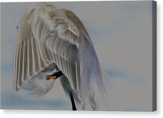 Mystical Egret Canvas Print