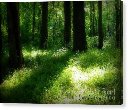 Mystical Forest Canvas Print by Lorraine Heath