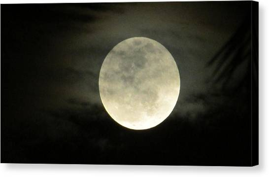 Mystical Moon Over Tampa Canvas Print