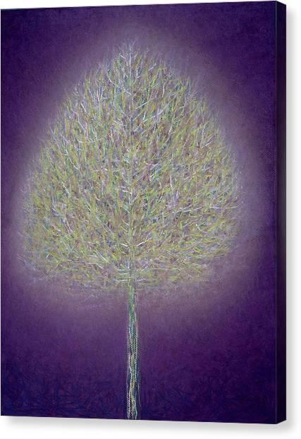 Phoenix Suns Canvas Print - Mystical Tree, 1996 Mixed Media by Peter Davidson