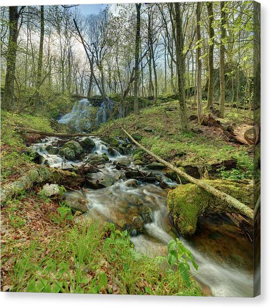 Naked Creek Falls Canvas Print