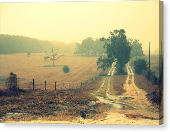 Canvas Print featuring the photograph Naked Tree Farm by Beverly Stapleton