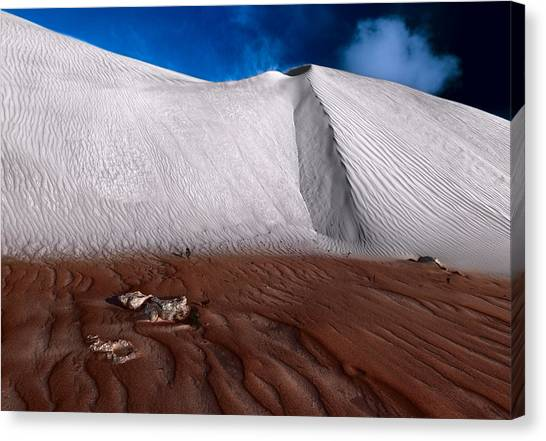 Nambung Desert Floor Canvas Print