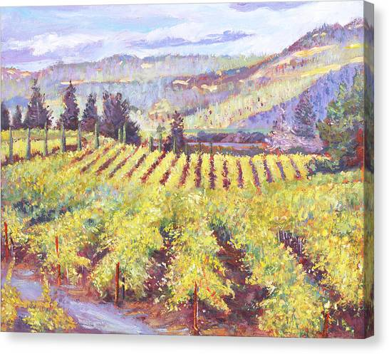 Napa Valley Vineyards Canvas Print