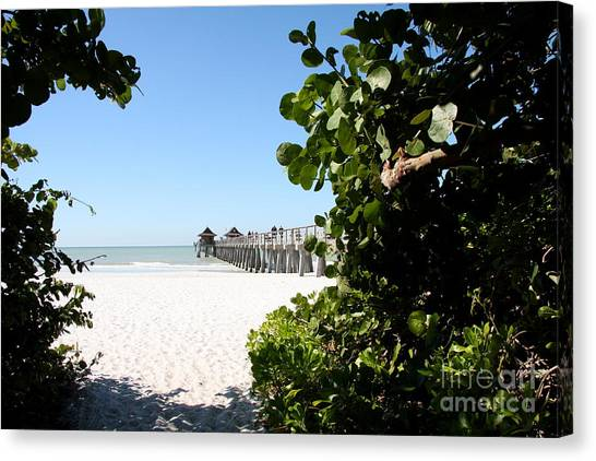 Canvas Print - Naples Pier View by Christiane Schulze Art And Photography