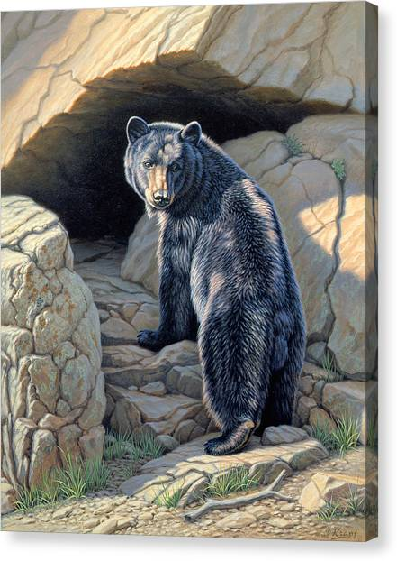 Black Bears Canvas Print - Napping Place by Paul Krapf
