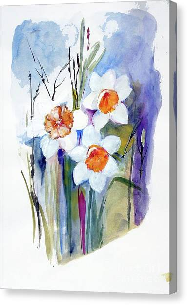 Narcissi Canvas Print by Sibby S