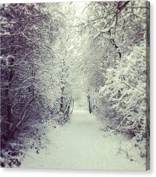 Snowball Canvas Print - Narnia by Rhian Norman