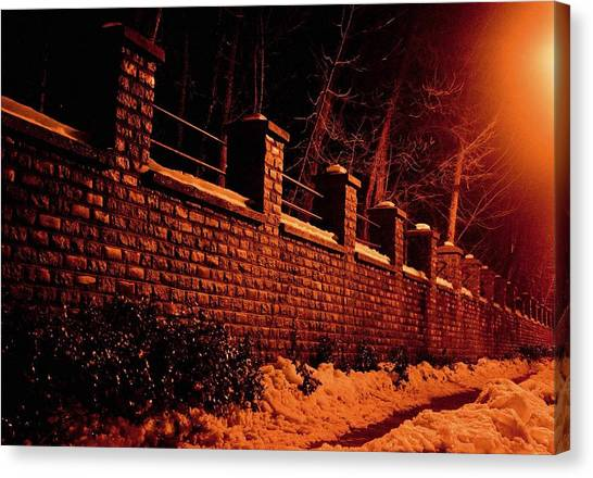 Narrow Path Canvas Print by Richie Stewart