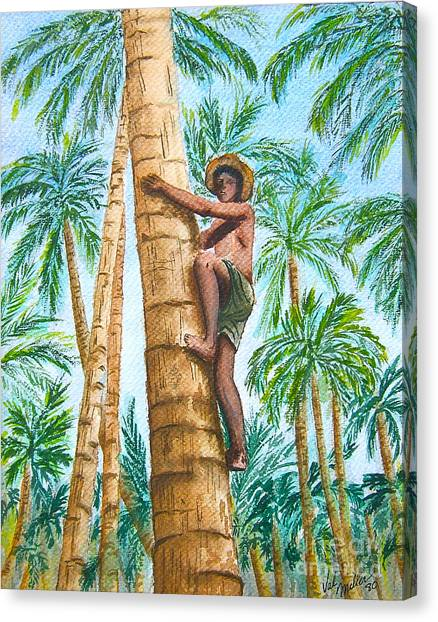 Native Climbing Palm Tree Canvas Print