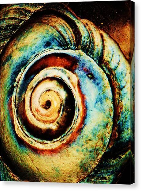 Native Spiral Canvas Print